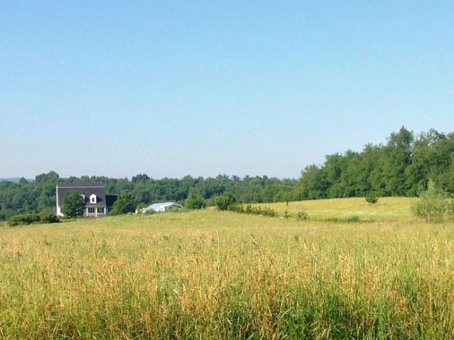 Simplicity Acres