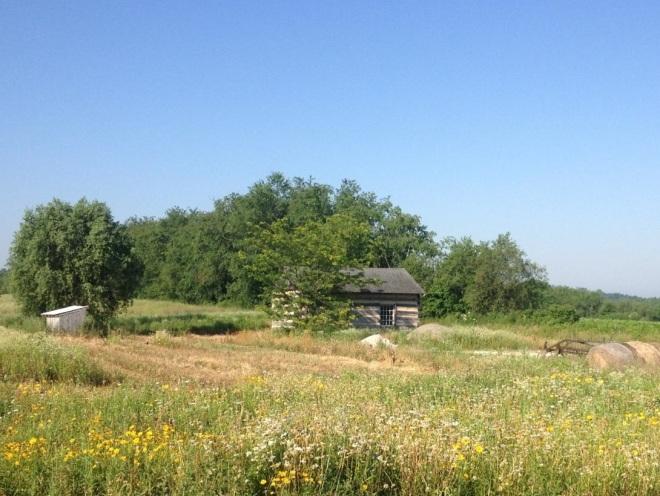 log cabin spring house
